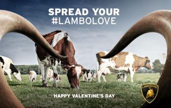 """Lamborghini, post per San Valentino, """"Cows"""". Headline """"Spread your lambolove"""". CW Beatrice Furlotti, AD&CD Pietro Lena."""