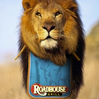 """Roadhouse Grill, campagna istituzionale, """"Carnivori"""", soggetto """"Lion"""". Headline """"The steakhouse"""". CW Beatrice Furlotti, AD Diego Mendozza, CD Bruno Bertelli."""